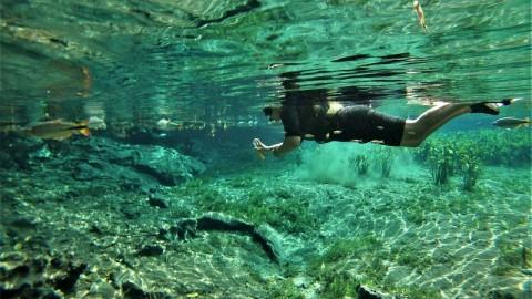 Flutuação no Aquário Natural – Bonito/MS