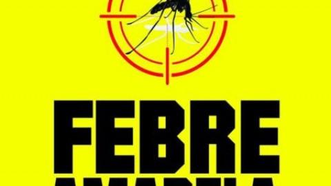 Tudo sobre febre amarela para viajantes